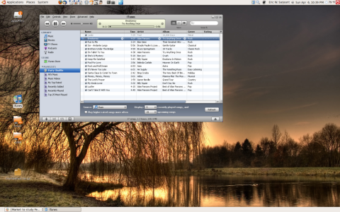 iTunes Running on Ubuntu