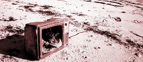 Throw Away Your Television (Roo Reynolds)